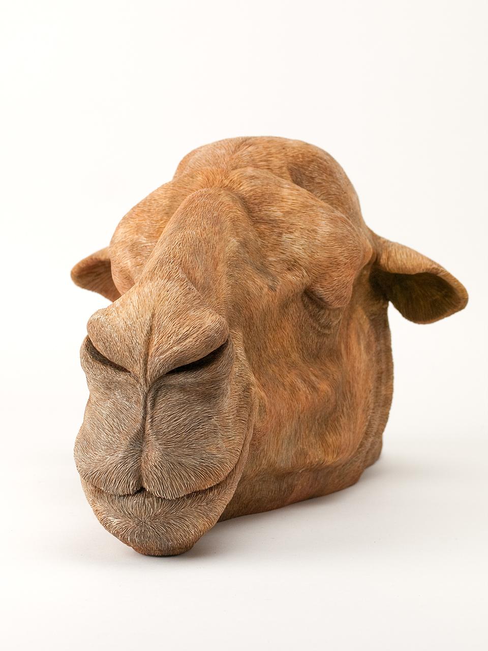 2012-3-camel-d-002