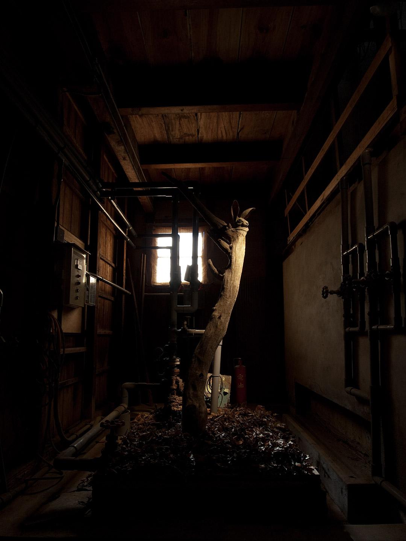 うすくち龍野醤油資料館 原料庫 2015年(兵庫県 たつの市)